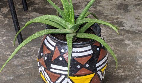 Pot de fleur Africa